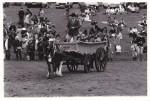 Harding cart