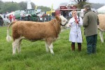 2012 North Somerset Show Livestock